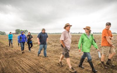 Chesapeake Harvest Hosts FREE Wholesale Readiness Workshop