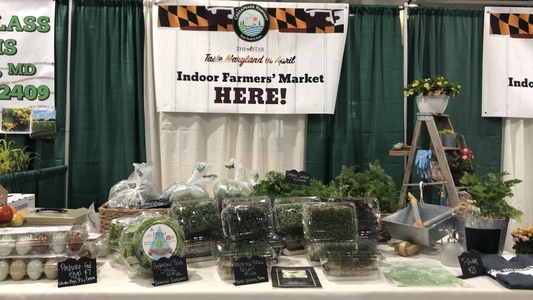 Chesapeake Harvest Home Show