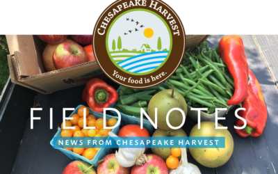 June Field Notes