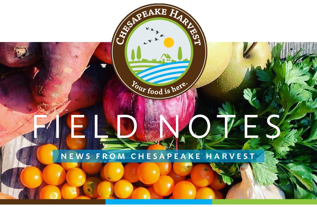September Field Notes